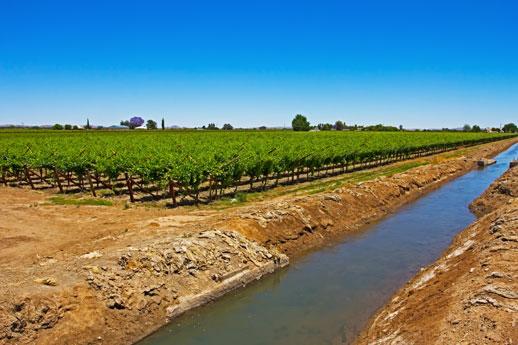 Irrigation perimeter